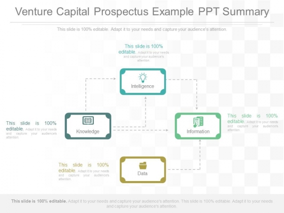 Venture Capital Prospectus Example Ppt Summary