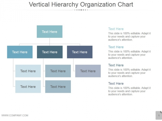 Vertical Hierarchy Organization Chart Ppt PowerPoint Presentation Layouts