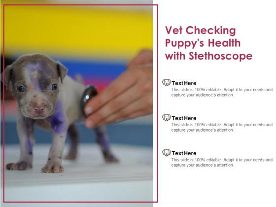 Vet Checking Puppys Health With Stethoscope Ppt PowerPoint Presentation Portfolio Deck PDF