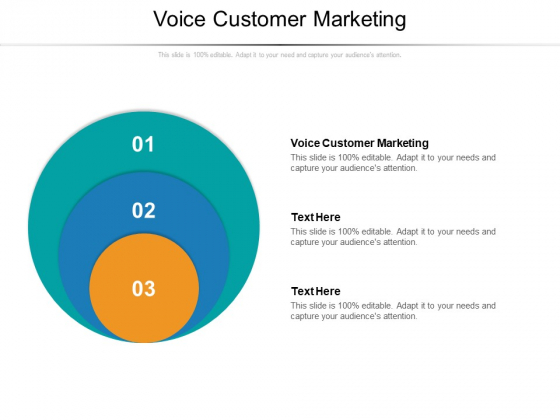 Voice Customer Marketing Ppt PowerPoint Presentation Infographics Graphics Pictures Cpb Pdf