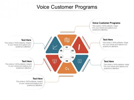 Voice Customer Programs Ppt PowerPoint Presentation Show Microsoft Cpb Pdf