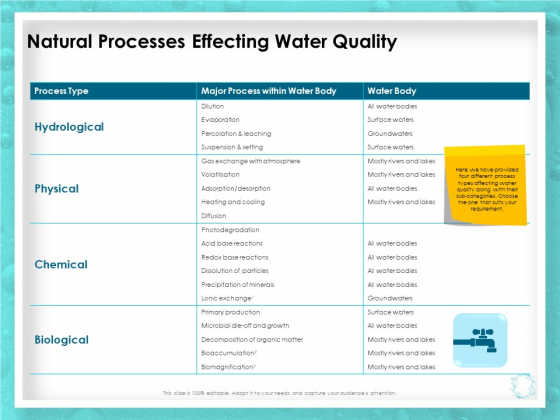 WQM System Natural Processes Effecting Water Quality Ppt PowerPoint Presentation Visual Aids Gallery PDF