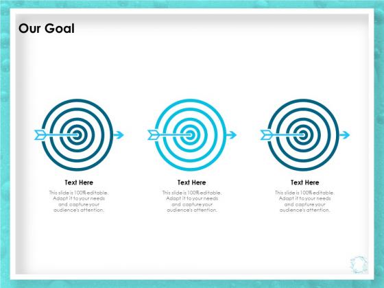 WQM System Our Goal Ppt PowerPoint Presentation Ideas Gridlines PDF