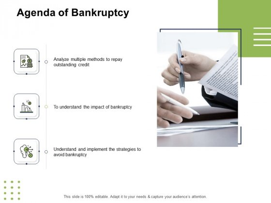 Ways To Bounce Back From Insolvency Agenda Of Bankruptcy Ppt Summary Guidelines PDF