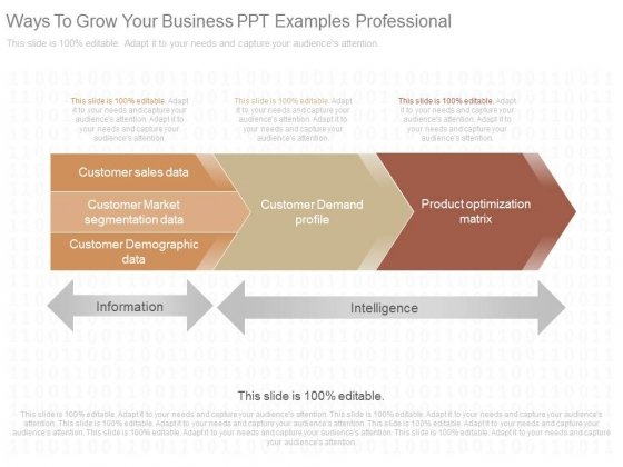 Ways To Grow Your Business Ppt Examples Professional