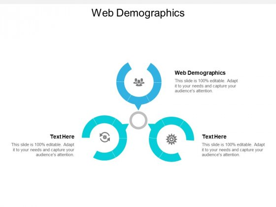 Web Demographics Ppt PowerPoint Presentation Summary Design Templates Cpb