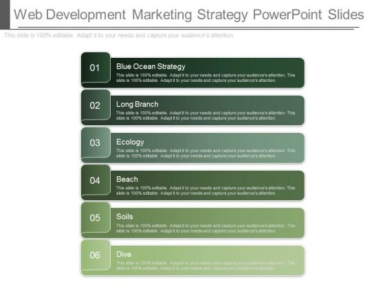 Web Development Marketing Strategy Powerpoint Slides