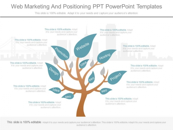 Web Marketing And Positioning Ppt Powerpoint Templates
