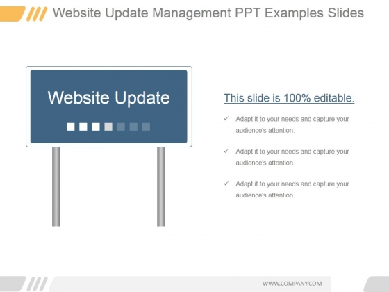 Website Update Management Ppt PowerPoint Presentation Picture