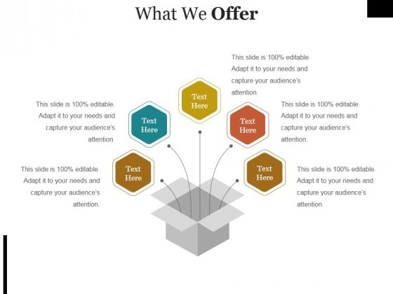 What We Offer Ppt PowerPoint Presentation Infographic Template Maker
