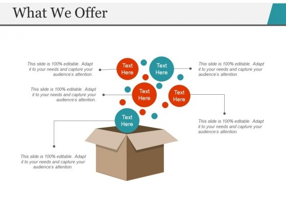 What We Offer Template 1 Ppt PowerPoint Presentation Outline Ideas