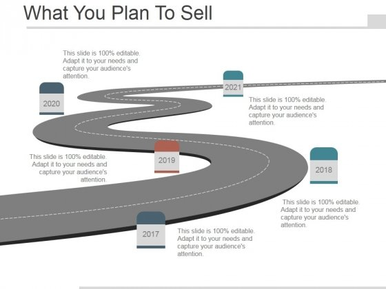 What You Plan To Sell Ppt PowerPoint Presentation Example