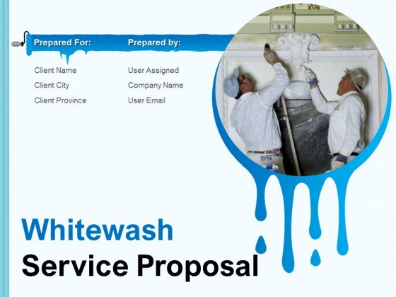 Whitewash Service Proposal Ppt PowerPoint Presentation Complete Deck With Slides