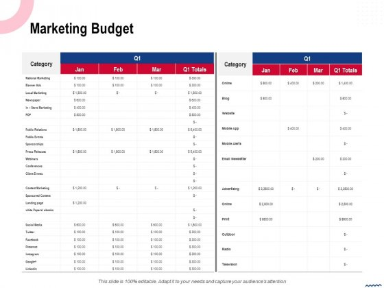 Wireless_Phone_Information_Management_Plan_Marketing_Budget_Themes_PDF_Slide_1