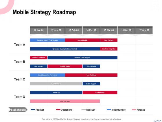 Wireless Phone Information Management Plan Mobile Strategy Roadmap Sample PDF