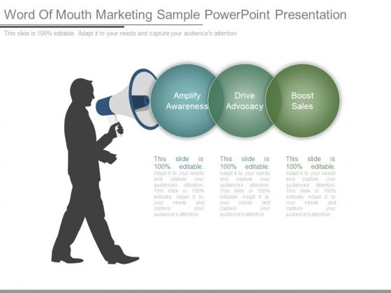 Word Of Mouth Marketing Sample Powerpoint Presentation