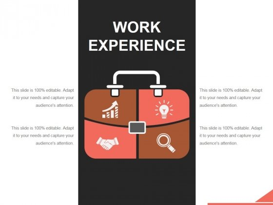 Work Experience Template 2 Ppt PowerPoint Presentation Sample