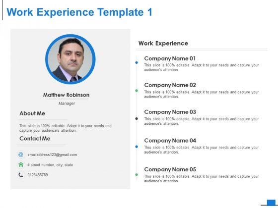 Work Experience Template Management Ppt PowerPoint Presentation Model Outline