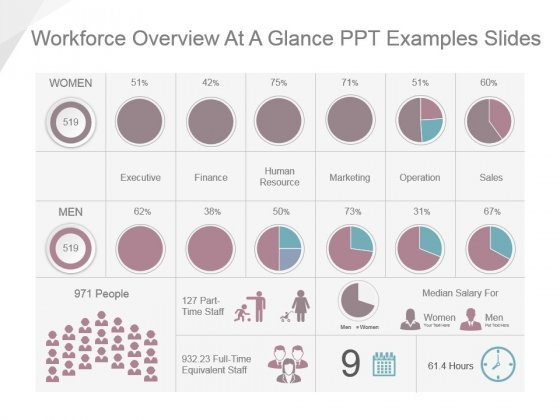 Workforce Overview At A Glance Ppt Examples Slides