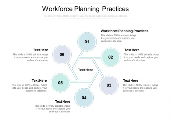Workforce Planning Practices Ppt PowerPoint Presentation Layouts Good Cpb