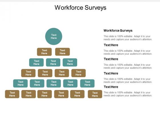 Workforce Surveys Ppt PowerPoint Presentation Styles Design Inspiration Cpb