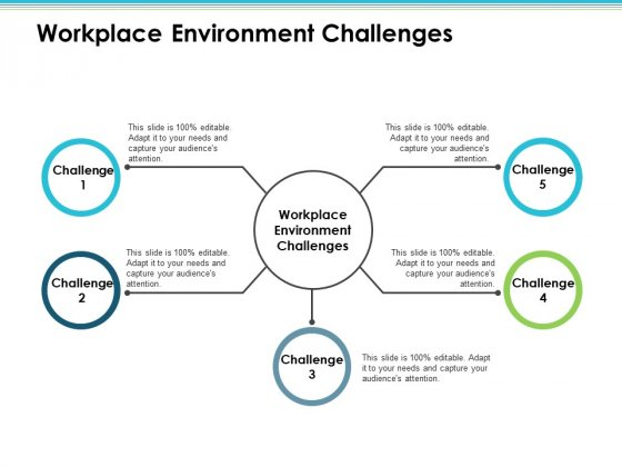 Workplace Environment Challenges Employee Value Proposition Ppt PowerPoint Presentation Styles