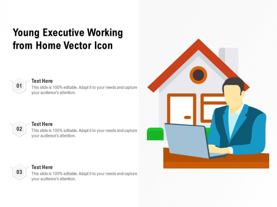 Young Executive Working From Home Vector Icon Ppt PowerPoint Presentation Gallery Format PDF
