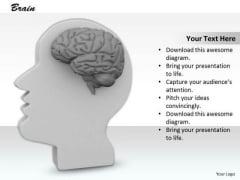 0814 Stock Photo 3d Illustration Of Human Brain PowerPoint Slide