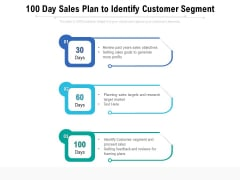 100 Day Sales Plan To Identify Customer Segment Ppt PowerPoint Presentation Pictures Design Ideas PDF
