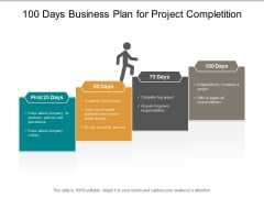 100 Days Business Plan For Project Completition Ppt PowerPoint Presentation Visual Aids Portfolio