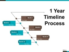 1 Year Timeline Process Ppt PowerPoint Presentation Infographic Template Format