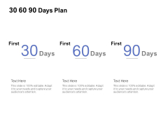 30 60 90 Days Plan Management Ppt PowerPoint Presentation Icon Graphics Template