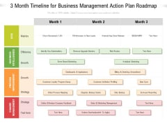3 Month Timeline For Business Management Action Plan Roadmap Pictures