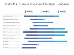 3 Months Business Investment Analysis Roadmap Structure