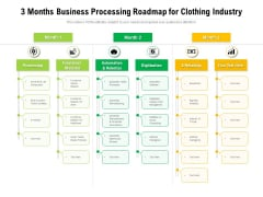 3 Months Business Processing Roadmap For Clothing Industry Ideas