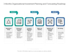 3 Months Organizational Investment Planning And Forecasting Roadmap Introduction