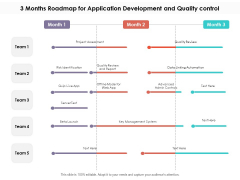 3 Months Roadmap For Application Development And Quality Control Information