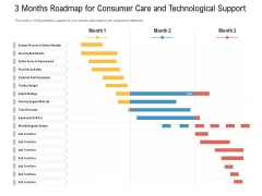 3 Months Roadmap For Consumer Care And Technological Support Professional