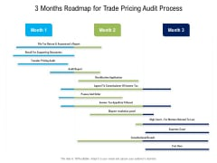 3 Months Roadmap For Trade Pricing Audit Process Ideas