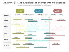 3 Months Software Application Management Roadmap Slides