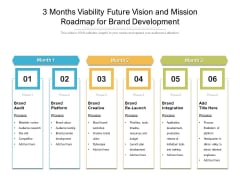 3 Months Viability Future Vision And Mission Roadmap For Brand Development Pictures