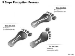 3 Steps Perception Process PowerPoint Presentation Template