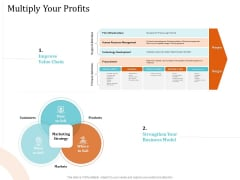5 Pillars Business Long Term Plan Multiply Your Profits Ppt Infographics Show PDF