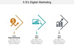 5 Ss Digital Marketing Ppt PowerPoint Presentation Show Backgrounds Cpb