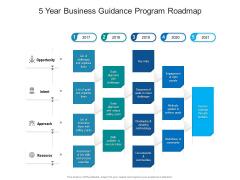 5 Year Business Guidance Program Roadmap Portrait