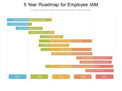 5 Year Roadmap For Employee IAM Summary