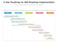 5 Year Roadmap For Iam Roadmap Implementation Demonstration