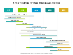 5 Year Roadmap For Trade Pricing Audit Process Professional