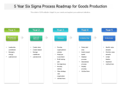 5 Year Six Sigma Process Roadmap For Goods Production Structure