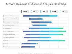 5 Years Business Investment Analysis Roadmap Summary